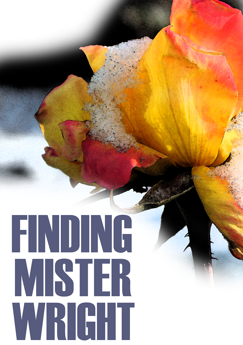 """""""Finding Mister Wright"""" cover"""